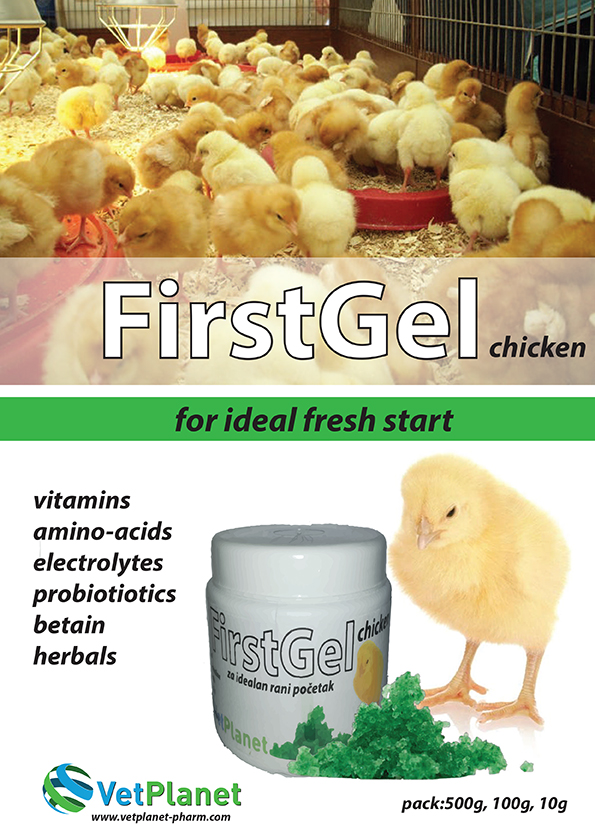 firstgelChicken
